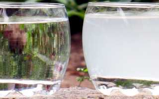 Мутная вода в скважине: причины, способы очистки и профилактика