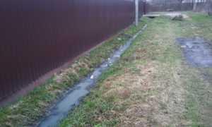 Какой штраф предусмотрен за слив канализации в канаву