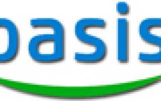Кондиционеры и сплит-системы Oasis: отзывы, инструкции к пульту управления