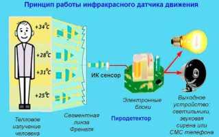 Выключатель с датчиком движения: принцип работы, разновидности и технические параметры