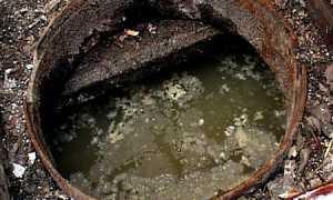 Чистка выгребной ямы в частном доме без откачки: биопрепараты, химия и народные средства